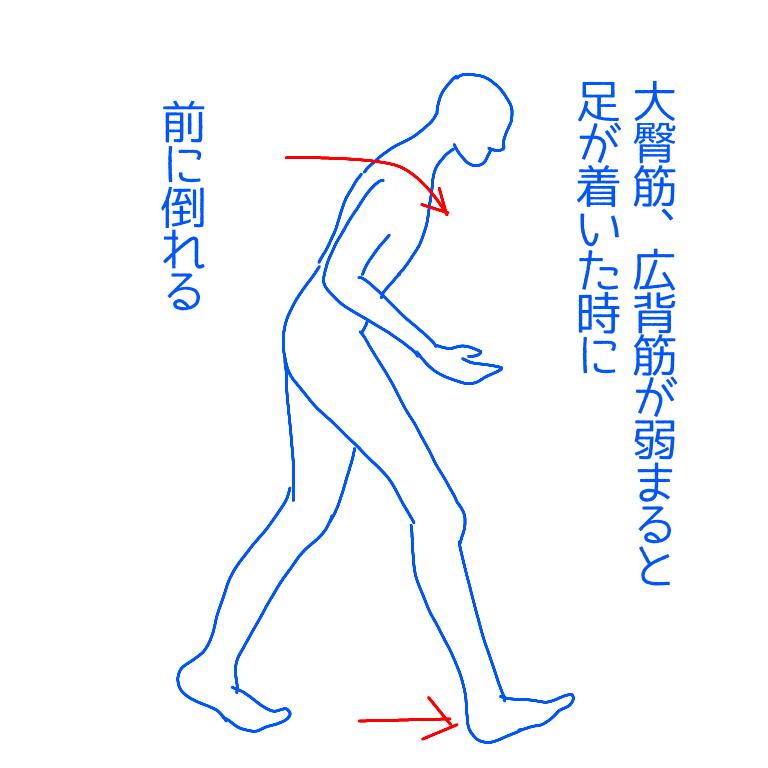 大臀筋弱まり前に倒れる